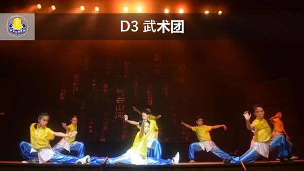 D3武术团